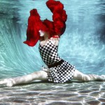 Scarlet Checkers by Water Dragon Photography